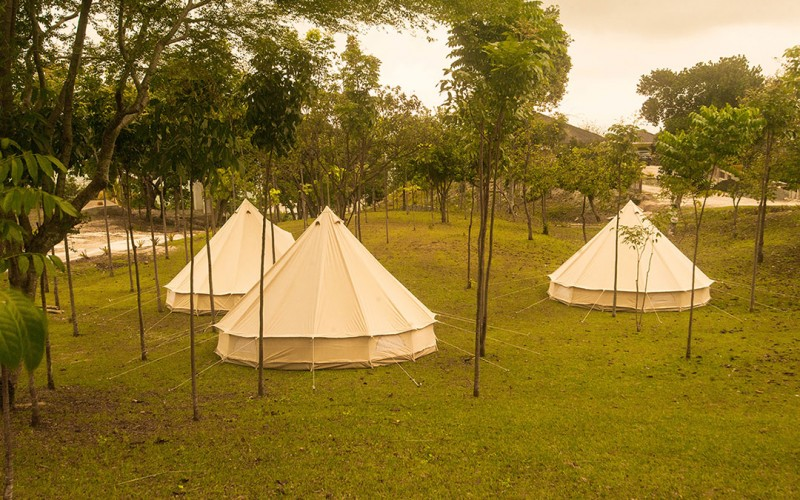Safari Tents Image